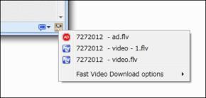Fast Video Downloadのスクリーンショット